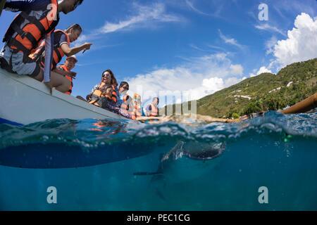 Touristen auf einem Kanu und ein Walhai, Rhiniodon Typus, unten mit Ihren Mund öffnen, Oslob, Philippinen. Dies ist die weltgrößte Arten von fis - Stockfoto