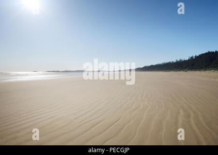 Pacific Rim National Park Reserve, langen Strand in Green Point in hellen Sommer Sonnenschein. Pacific Ocean Shore im Tofino, Vancouver Island, BC, Kanada - Stockfoto