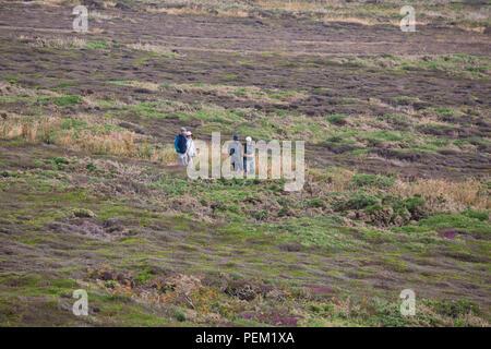Wanderer genießen die Ruhe von Anglesey - Stockfoto