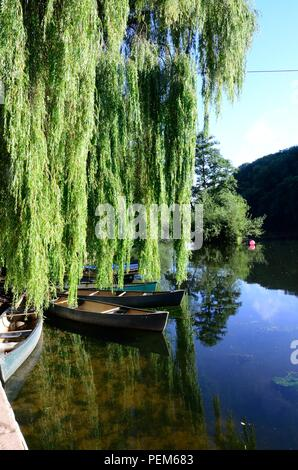 Kanus unter einer Trauerweide Baum gebunden auf dem Fluss Wye an Symonds Yat Herefordshire England Großbritannien - Stockfoto