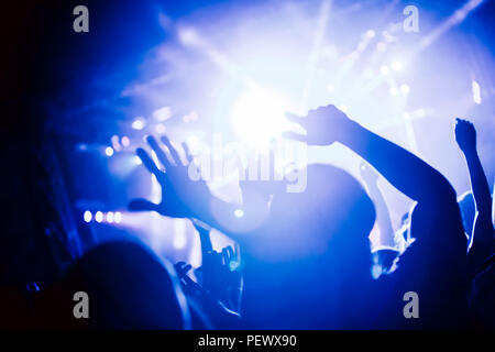 Jubelnde Menge bei Konzert Musik Performance - Stockfoto