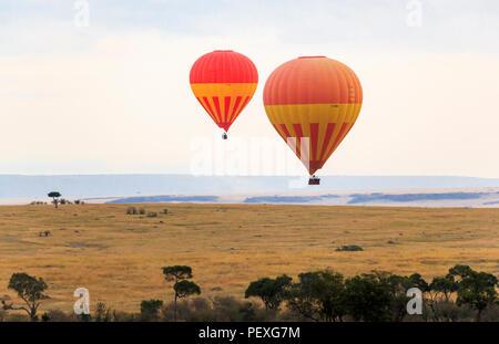 Zwei bunte orange und gelb Heißluftballons im Flug über die Savanne in den frühen Morgen auf eine Ballonfahrt im Morgengrauen, Masai Mara, Kenia - Stockfoto