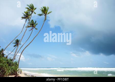 Unberührten tropischen Strand von Sri Lanka. Akurala Strand. - Stockfoto