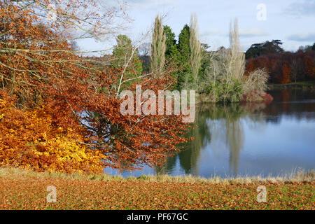Herbst auf dem Gelände von Blenheim Palace, Großbritannien - Stockfoto