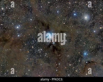 NGC 1333, eine Reflexion Nebelfleck im Sternbild Perseus befindet. Stockfoto