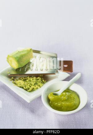 Eutrema Wasabi, frische Wasabi root auf metallreibebrett mit fein geriebenen Wurzel in kleinen Keramik Teller, Wasabi Paste in kleine keramische Schüssel mit Löffel. - Stockfoto
