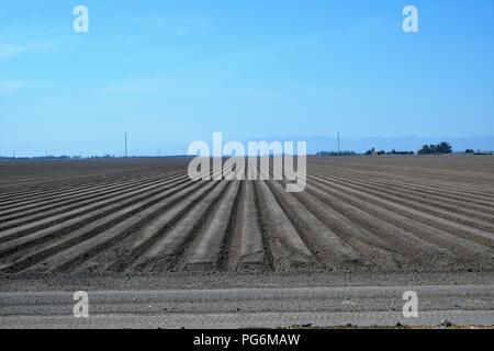 Feld für die Aussaat im Imperial County, Kalifornien, USA. - Stockfoto
