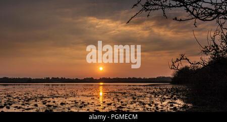 Sonnenuntergang über Lough Ree Athlone Irland - Stockfoto