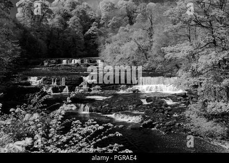 Sommer, Upper Falls von Aysgarth fällt, Fluß Ure, Wensleydale, Yorkshire Dales National Park, North Yorkshire, England - Stockfoto