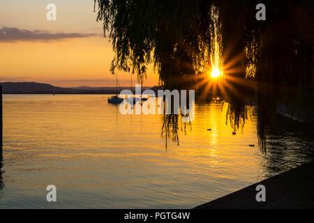 Deutschland, Sommerabend am Bodensee unter Willow Tree - Stockfoto