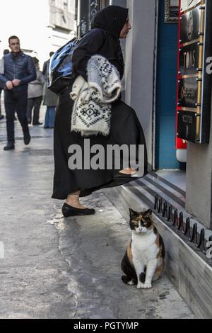 ISTANBUL, Türkei - 27 Dezember, 2015: streunende Katze stehend vor einem Geschäft, während eine muslimische Frau das Tragen der bescheidene Kleidung mit dem traditionellen Narbe - Stockfoto