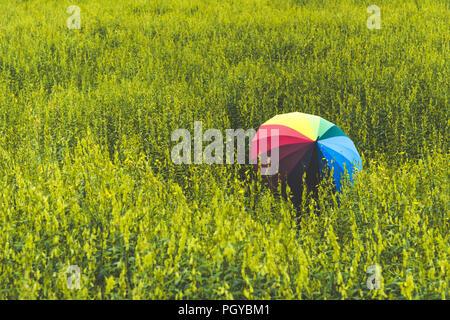 Rückansicht des bunten Regenbogen Regenschirm Holding durch Frau in der Wiese Feld. Menschen und Mode Konzept. Natur und Erholung. Glück der weiblichen - Stockfoto