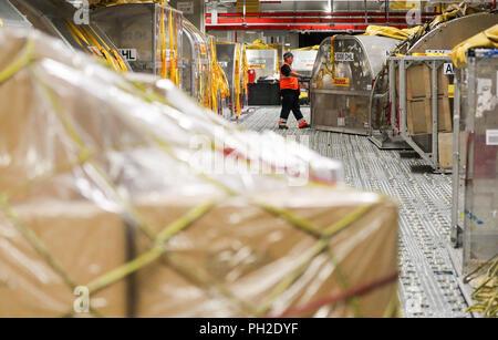 29. August 2018, Schkeuditz, Deutschland: DHL-Mitarbeiter zieht ein Container mit Luftfracht in der Nacht für Laden durch den DHL Hub am Flughafen Leipzig/Halle. Die DHL-Drehkreuz am Flughafen Leipzig in Betrieb gegangen. Vor zehn Jahren. Damals 125.000 Sendungen pro Tag im Durchschnitt bearbeitet wurden, heute sind es 350.000. Der Hub Leipzig hat in die größte innerhalb der DHL Express Netzwerk im Laufe der zehn Jahre entwickelt. Inzwischen 5700 Menschen arbeiten am Standort, 99 Prozent von ihnen aus der Region. Neben fünf neue Flugzeuge, DHL plant ein Flugsimulator Zentrum für Ausbildung und Schulung - Stockfoto
