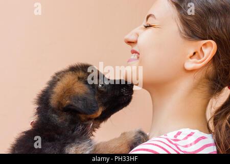 Welpen gibt einen Kuss auf seine Mädchen Eigentümer. - Stockfoto