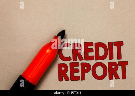 Wort Schreiben Text Kreditauskunft Business Konzept Für Die