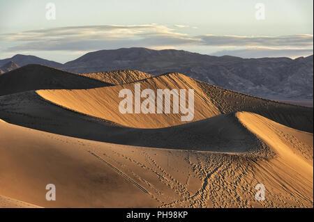 Am frühen Morgen Sonnenlicht auf der Mesquite flachen Sand Dünen - Stockfoto