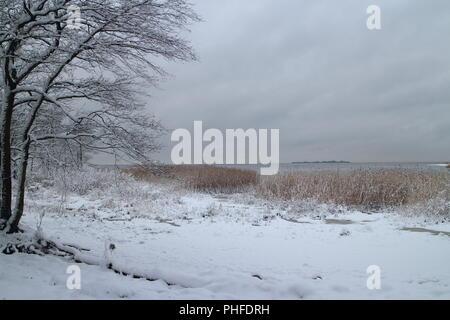 Winter Dramatischer Himmel - Stockfoto