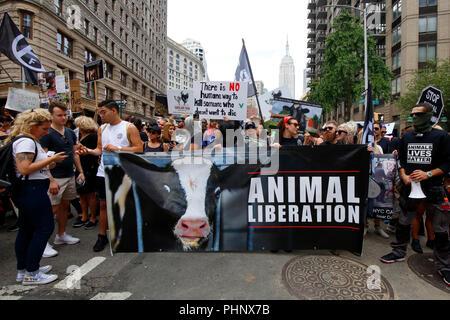 New York, NY, USA. 1. September 2018. Tierschützer bereiten den Broadway hinunter auf der offiziellen Tierrechte März NYC von Surge organisiert bis März, und Totale Befreiung von New York. - Stockfoto