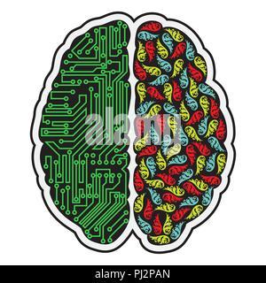 Linken und rechten abstrakte Teile des menschlichen Gehirns - Stockfoto
