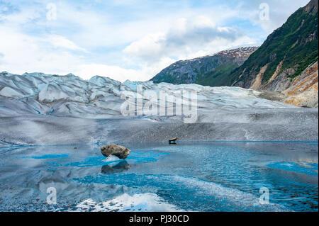 Gletscher Helikopter-tour - Juneau Alaska Kreuzfahrt Schiff Ausflug über die Juneau Icefield Landung auf Gilkey Gletscher - atemberaubend blauen eiszeitliche Schmelzwasser - Stockfoto
