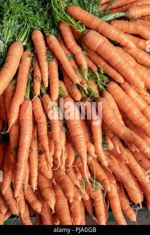 Karotten für Verkauf auf einem Gemüse in Stroud Farmers Market Stall. Stroud, Gloucestershire, England - Stockfoto