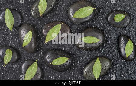 Mehrere schwarze Basalt massage Steine mit grünen Blättern auf ihnen, bedeckt mit Wassertropfen, auf einem schwarzen Hintergrund verteilt, Ansicht von oben, flach - Stockfoto