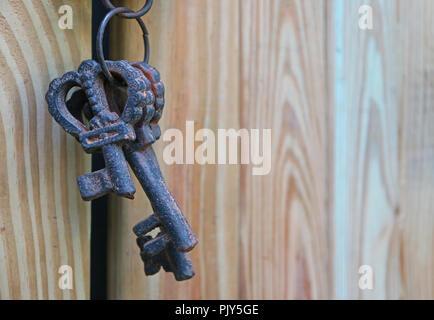 In der Nähe von dunklen Farbe Vintage dekorative Tasten auf der Hellen Farbe Holztür, Textur Hintergrund - Stockfoto