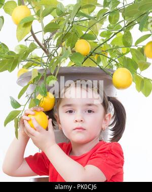 Junge Mädchen eine Zitrone aus einem Lemon Tree. - Stockfoto