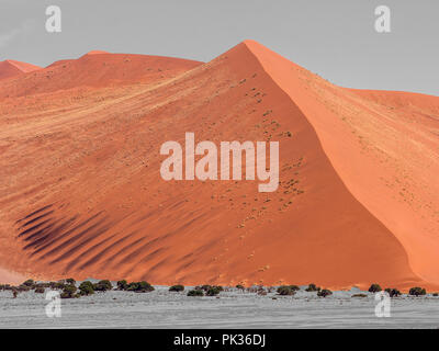 Blick von der Düne 45, Namib Wüste in Namibia, verzauberte Landschaften, schwarz-weiß und Farbe - Stockfoto