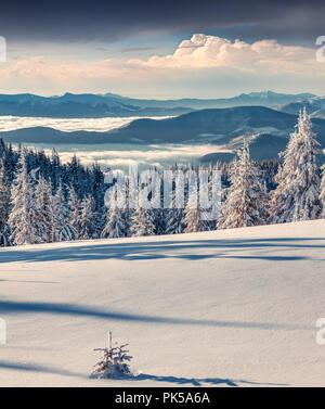 Sonnigen morgen Szene im Winter Berg. Instagram Muskelaufbau. - Stockfoto