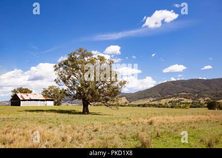 Allans flache Landschaft Australien - Stockfoto
