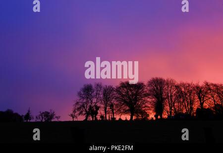 Bunte Sunrise mit Baum Silhouetten - Stockfoto