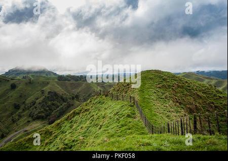 Die Tahora Saddle, Teil der vergessenen Welt Highway, North Island, Neuseeland. Pastorale Landschaft mit grünen Hügeln und grauen bewölkten Himmel. - Stockfoto