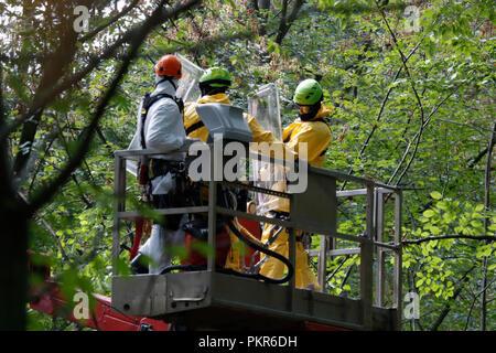 Forst Kletterausrüstung : Hambacher forst live polizei berichtet von steinwürfen und