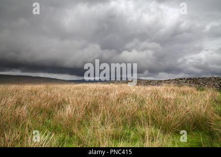 Dramatischer Himmel und Trockenmauer, Ribblesdale, Drei Zinnen, North Yorkshire Dales National Park - Stockfoto