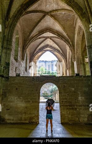 Frankreich. Gard (30). Villeneuve-Les-Avignon. Chartreuse Notre-Dame-du-Val-de-Bénédiction. Die Kirche - Stockfoto