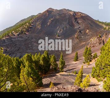 Vulkanische Landschaft entlang der Ruta de los Volcanes, schönen Wanderweg über die Vulkane, La Palma, Kanarische Inseln - Stockfoto
