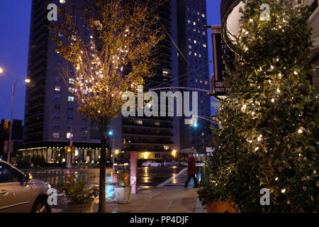 Die Bäume Leuchten für die Weihnachtszeit - Stockfoto