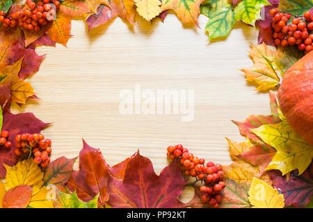 Grenze der Blätter im Herbst, Kürbis und vogelbeere auf Holzbrett. Kopieren Sie Platz. Fallen. - Stockfoto