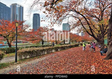 OSAKA, Japan - 22. NOVEMBER 2016: die Menschen besuchen Blätter im Herbst in Minami Temma Park in Osaka, Japan. Osaka gehört zur 2. größte Metropolregion von J - Stockfoto