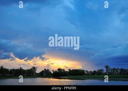 Sonnenuntergang über dem Yellow Water Billabong, Northern Territory, Top End, Australien - Stockfoto