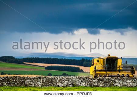 Oxnam, Jedburgh, Scottish Borders, Großbritannien. 6. September 2018. Mähdrescher bei der Arbeit unter stürmischen Himmel. - Stockfoto