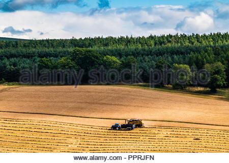 Oxnam, Jedburgh, Scottish Borders, Großbritannien. 27. September 2018. Ein Mähdrescher und Schlepper bei der Arbeit in der Nähe von Mischwald in den schottischen Borders. - Stockfoto