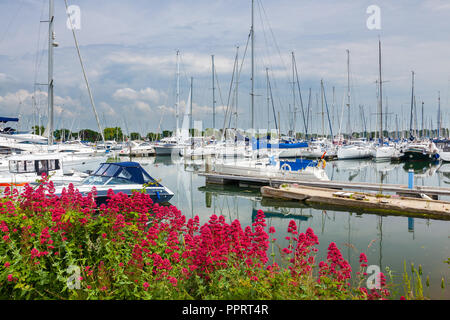 Chichester Harbour West Sussex England UK Europa - Stockfoto