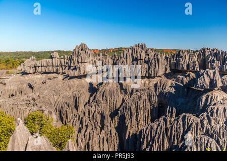 Schöne Aussicht auf die einzigartige Geografie an der Tsingy de Bemaraha - Stockfoto