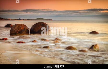 Die berühmten moeraki Boulders, ein Symbol von Neuseeland, in Otago, bei Sonnenaufgang. - Stockfoto