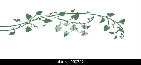 Hand gezeichnet Kürbis Weinblätter und Anlage in Grün auf weißem Hintergrund mit niedlichen Locken, Garten und im Herbst design Element isoliert