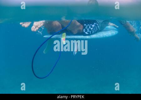 Malediven, Indischer Ozean, Surfer liegen auf Surfbrett, Unterwasser Schuß - Stockfoto