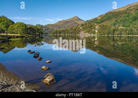 Reflexionen in Llyn Gwynant im glaslyn Tal nach Westen mit Yr Aran Berg im Hintergrund Snowdonia National Park North Wales UK Septembe - Stockfoto