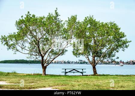 St. Petersburg Florida Bay Pines War Veterans Memorial Park Boca Ciega Bay Picknick Tisch - Stockfoto